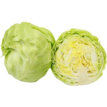 6月份应该吃什么蔬菜
